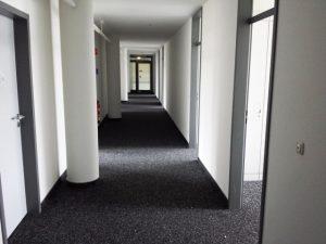 Entrümpelung von Gewerbe und Private Räume